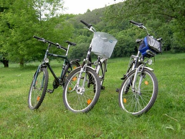 Rundkurse - Powerboot & Paddeln oder Kanu & Rad1
